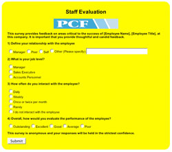Example Online Survey Form